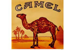 Camel - жидкость для электронных сигарет 10 мл